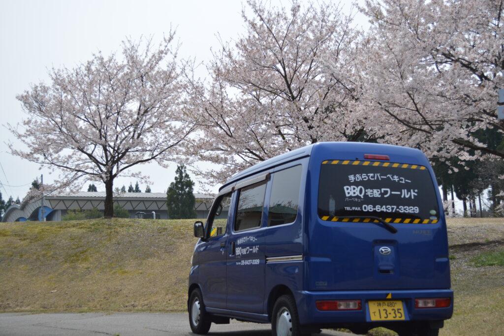 泰澄の杜BBQ広場の桜