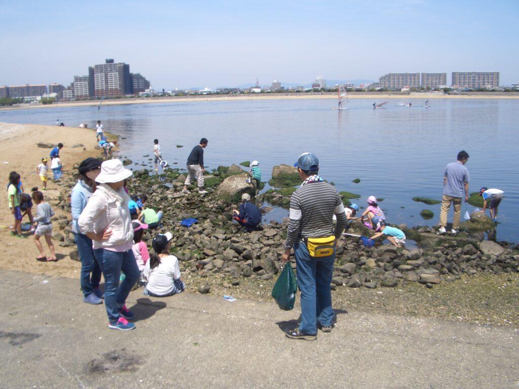 甲子園浜海浜公園BBQエリア奥にある磯浜