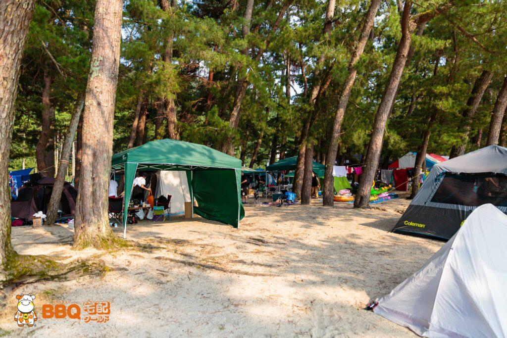 白ひげ浜水泳キャンプ場のキャンプサイト