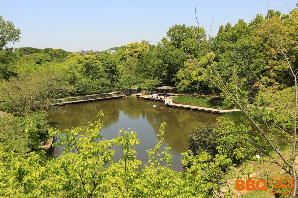 奥須磨公園の池