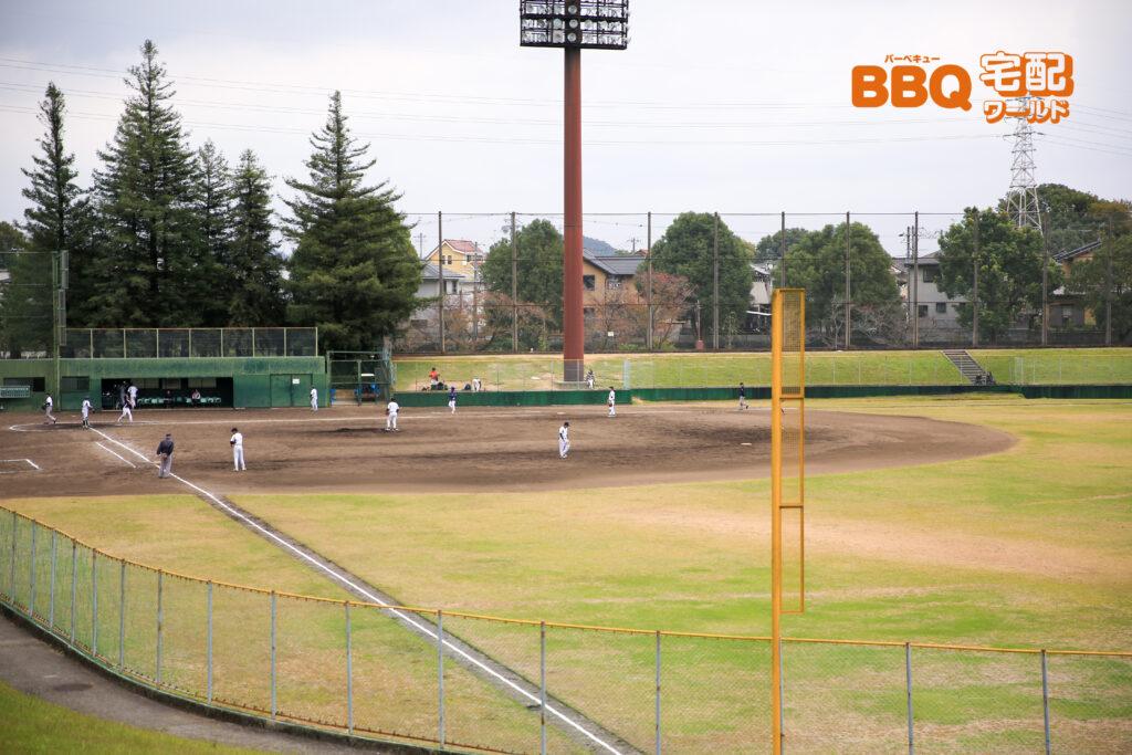 日岡山公園の野球場
