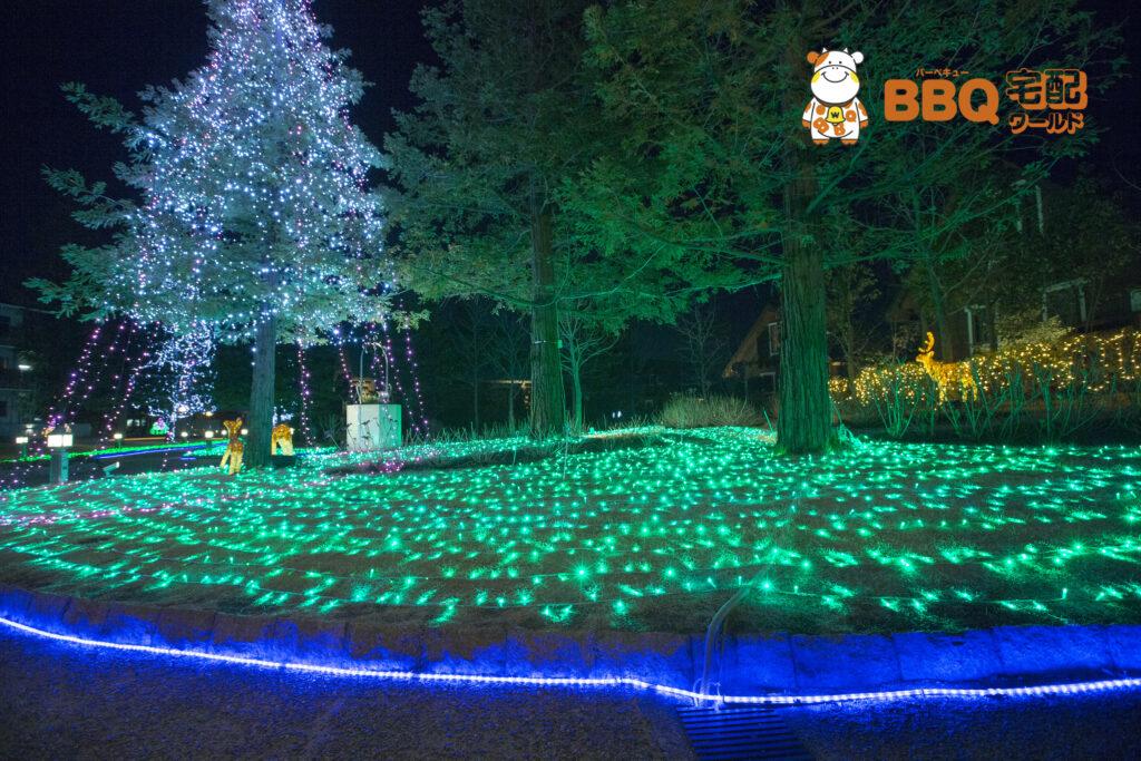森とリルのBBQフィールド夜景