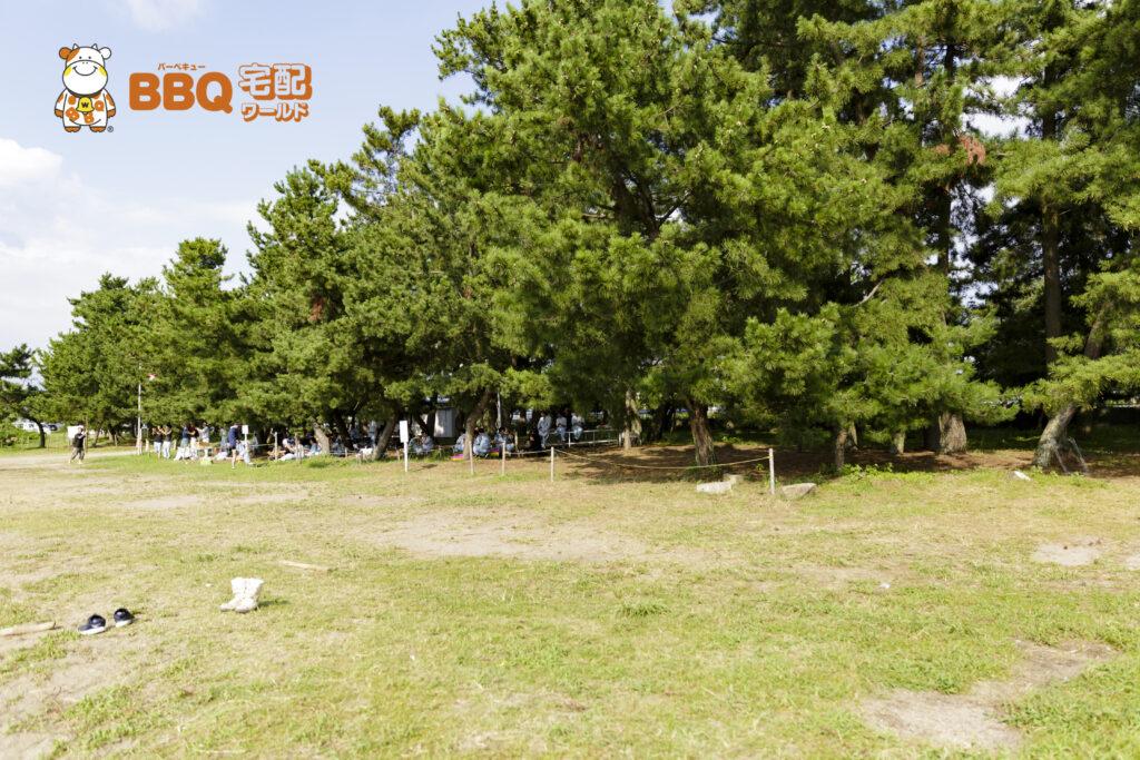 琵琶湖神明キャンプ場BBQ風景