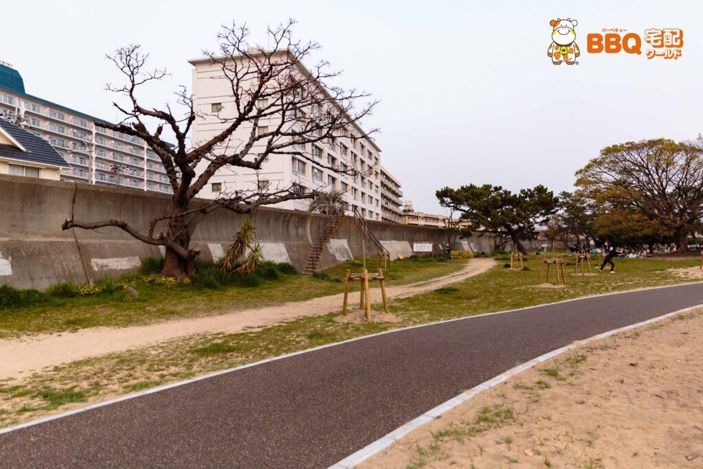 御前浜BBQエリアの遊歩道10