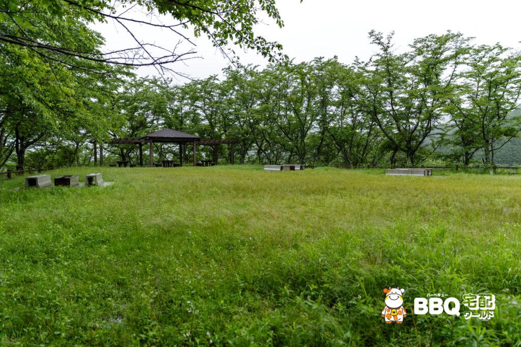 天理ダム風致公園BBQ場1