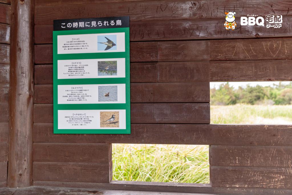 RICバーベキュー広場横の野鳥園説明