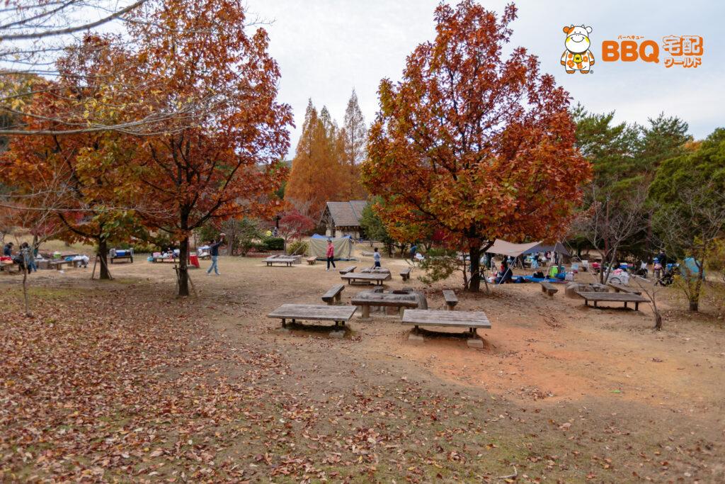 神戸青少年公園デイキャンプ場BBQ3