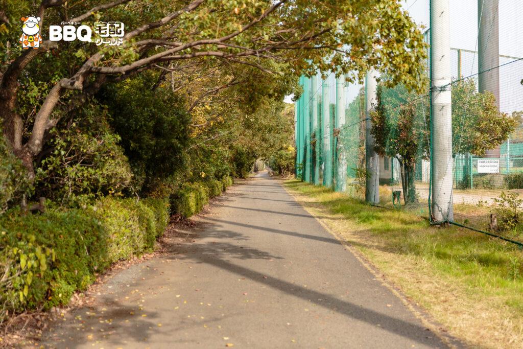 助松公園野球場への遊歩道