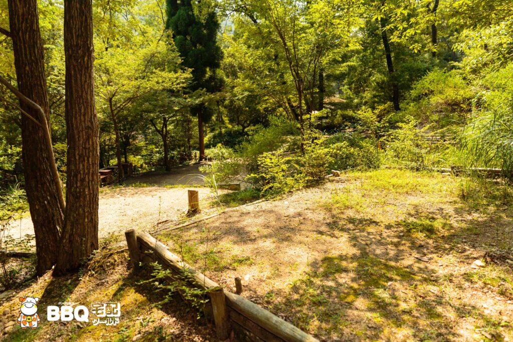 社家郷山キャンプ場Aサイト4