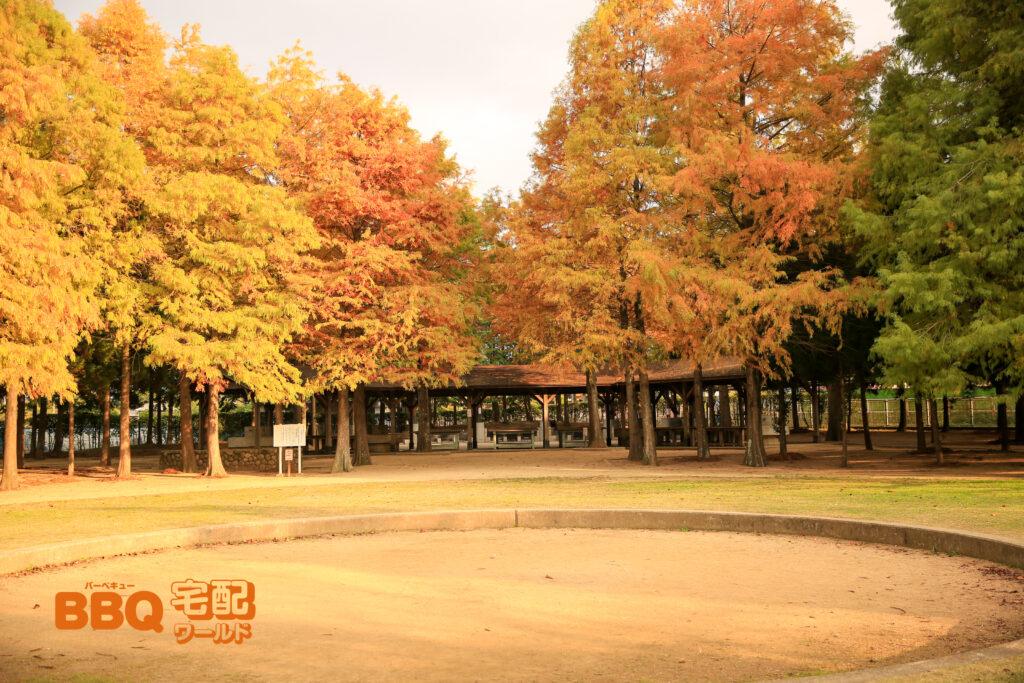稲美町野外活動センターのキャンプファイヤー場