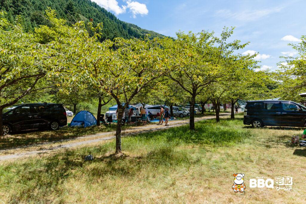 梅ノ木キャンプ場の木陰BBQエリア2