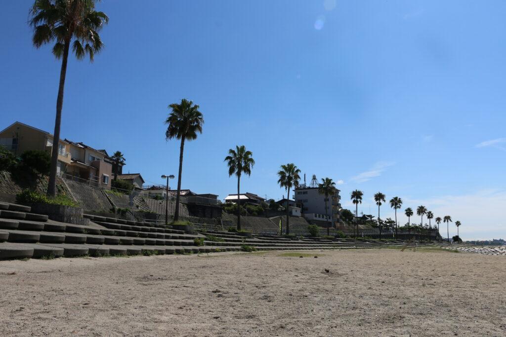 江井ヶ島海岸BBQエリアの砂浜とヤシの木