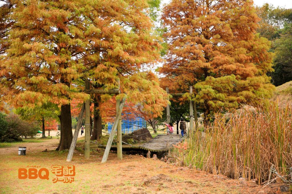古法華自然公園キャンプ場のアスレチック