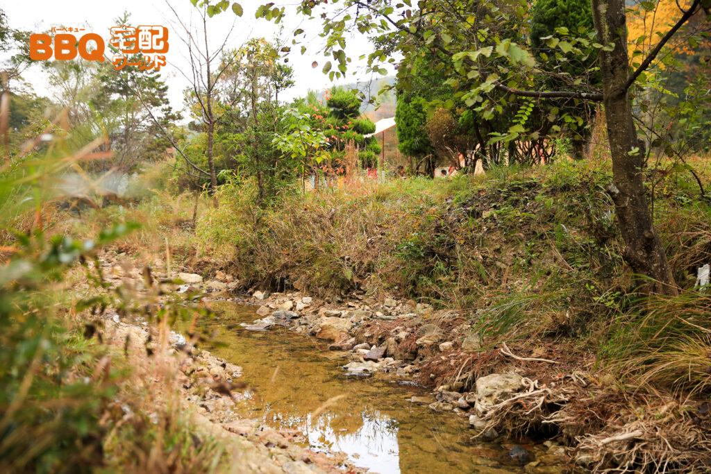 古法華自然公園BBQサイトの小川
