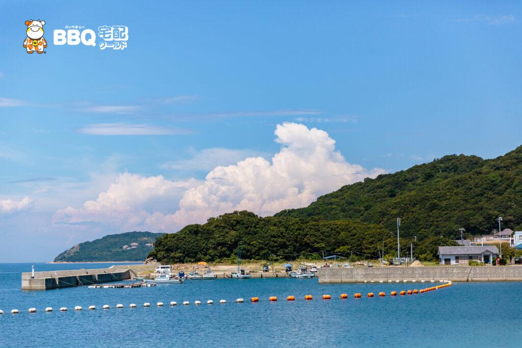 伊毘うずしお村キャンプ場の海水浴場3