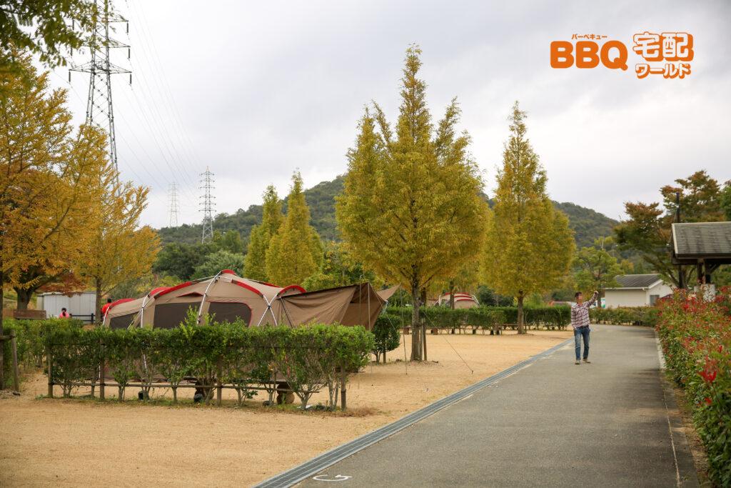 権現総合公園キャンプ場フリーサイト