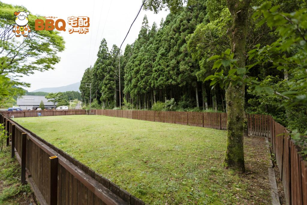 千枚田オートキャンプ場ドッグラン