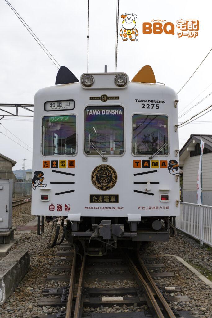 たま電車の正面