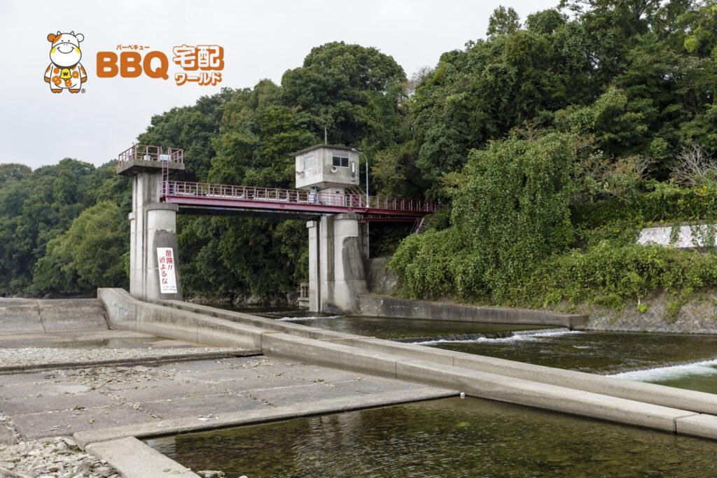 貴志川河川敷BBQ場の川