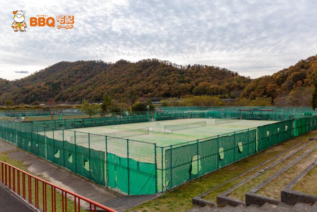 下青野公園テニス場全景
