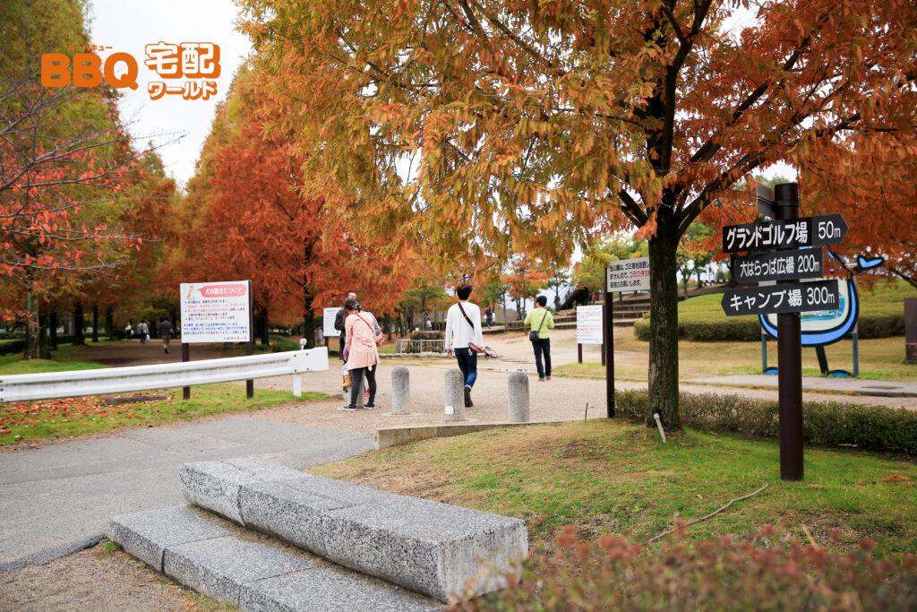 矢橋帰帆島公園の一般駐車場