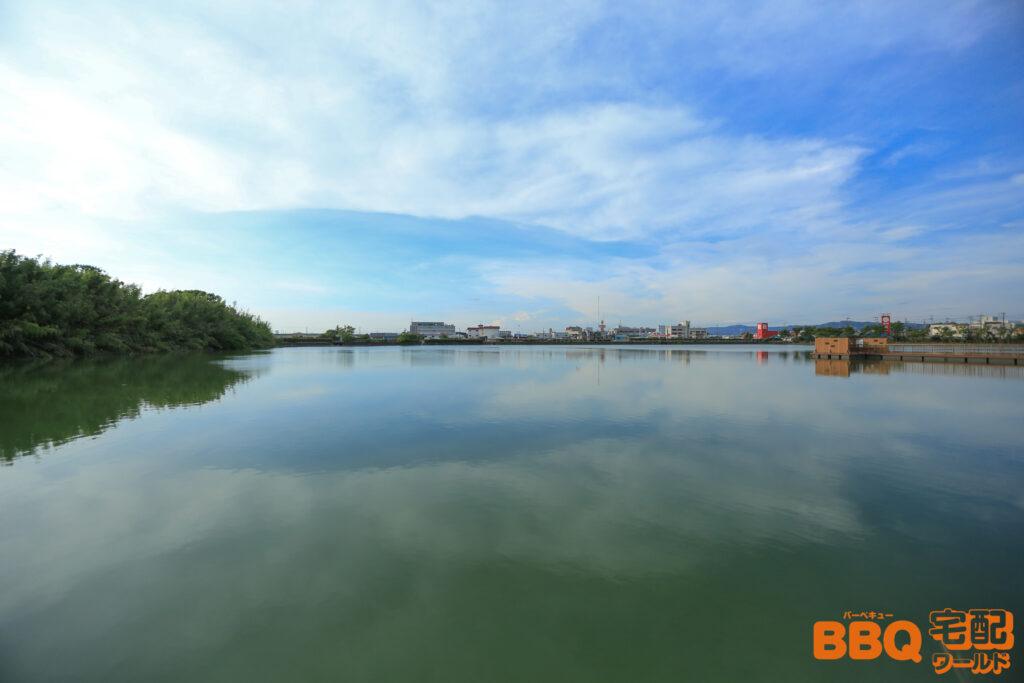 舟渡池公園の池