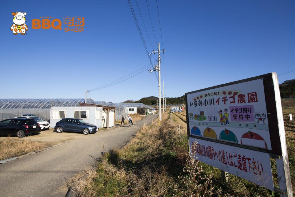 いずみ小川いちご農園入口
